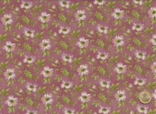 Maywood Studio - Wild   - antique pink