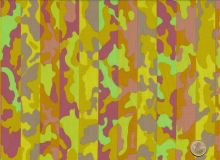 Brandon Mably - Spring - Stripe Camouflage