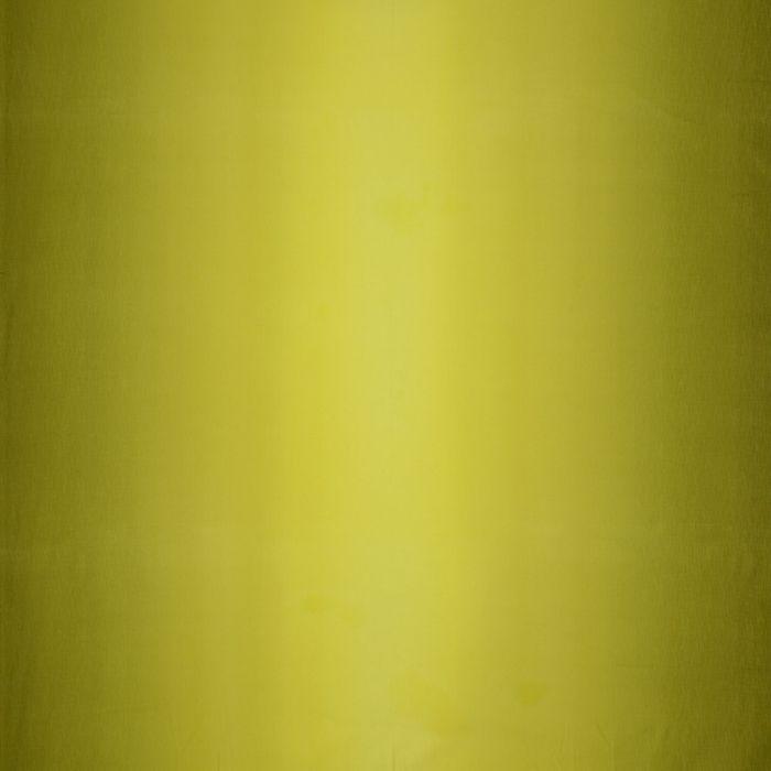 E.E.Schenck Com. Farbverlauf Gelb Olive