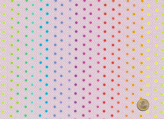 Tula Pink - True Colors - Hexy Rainbow Shell