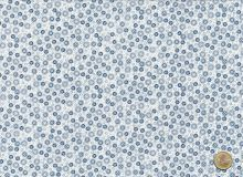 Windham Fabrics - Homeschool creme / blau