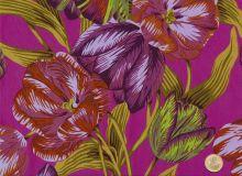 Philip Jacobs - Pink - Tulip Extravaganza