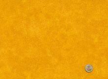 Makower - Dimples Rajah - 1867-Y4